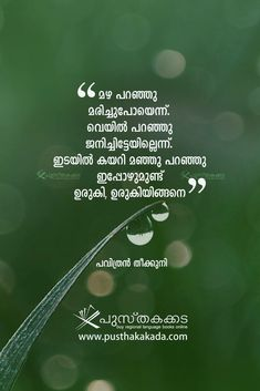 Writer Quotes, Book Quotes, Life Quotes, Crazy Feeling, How Are You Feeling, Quotations, Qoutes, Malayalam Quotes, Photo Background Images
