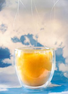 James and the Giant Peach by Roald Dahl; Peach Juice Recipe