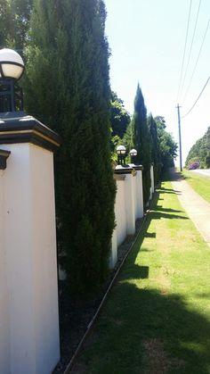 Fancy fence school rd Fancy Fence, Tamborine Mountain, Sidewalk, Outdoor Furniture, School, Side Walkway, Walkway, Backyard Furniture, Walkways