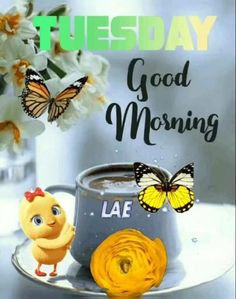Good Morning Tuesday Images, Good Morning Video Songs, Good Morning Gif Animation, Good Morning Gift, Good Morning Wishes Friends, Good Morning Happy Monday, Good Morning Beautiful Pictures, Good Afternoon Quotes, Good Morning Images Flowers