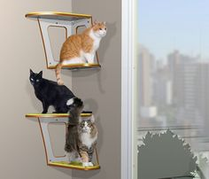 RonRon is a Brazilian company that's redefining style for the modern cat. Check out this huge collection of modern cat furniture including beds, hideaways, scratchers, cat trees, and wall climbing systems. There are several styles of perches and hideaways to choose from, many that serve double duty as scratchers. All have replaceable carpet to extend...Read More