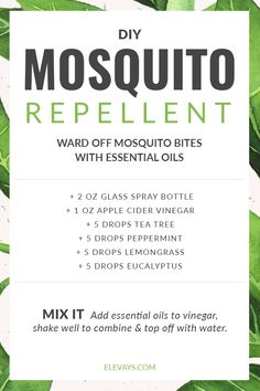 You don't need to cover your family with toxic chemicals to keep mosquitos & other annoying insects away.Try this essential oil homemade mosquito repellent! Essential Oils For Mosquitoes, Mosquito Repellent Essential Oils, Essential Oil Bug Spray, Diy Mosquito Repellent, Essential Oils Guide, Essential Oil Blends, Insect Repellent, Mosquito Spray, Homemade Essential Oils