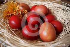 Photo about Easter background with red eggs. Image of rustic, easter, basket - 140228675 Egg Photo, Easter Backgrounds, About Easter, Free Stock Photos, Eggs, Rustic, Red, Image, Country Primitive