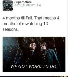 Good luck. As a newbie to the show, I fell short at season eight before season ten began airing.