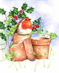 Christmas Bird, Christmas Scenes, Christmas Crafts, Merry Christmas, Christmas Decorations, Illustration Noel, Cute Animal Illustration, Illustrations, Robin Bird