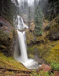 Falls Creek Fall . Washington