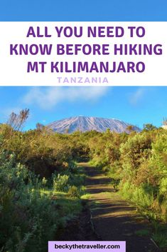 Top tips for climbing Mount Kilimanjaro in Tanzania. Everything you need to know to prepare to climb Mt Kilimanjaro. Plus full packing list what to take on the climb, useful hints and tips to reach the summit. #africa #tanzania #PackingList #ClimbKilimanjaro #hiking #trekking #mtkili #rongai #Kilimanjaro #beckythetraveller