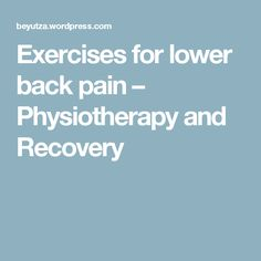 Exercises for lower back pain – Physiotherapy and Recovery