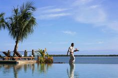 Sheraton Villas - Denerau Fiji. Drinks in the infinity pool