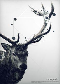 #avantgarde on #Behance #Design