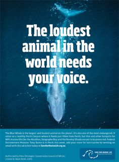 Help save our marine life.