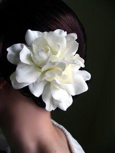 Gardenias - gorgeous!