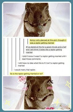 Funny pictures about A raptor getting married. Oh, and cool pics about A raptor getting married. Also, A raptor getting married. Lol, Jurrassic Park, Best Of Tumblr, Jurassic Park World, Funny Tumblr Posts, Humor, Funny Pins, Laughing So Hard, T Rex