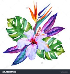 Tropical Flowers In Watercolor, Hibiscus, Plumeria, Monstera, Palm ...