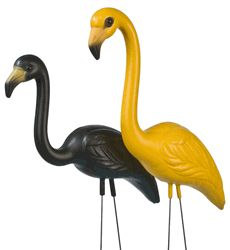Black and Gold Yard Flamingos - got these for my grandson because they are his team colors Yard Flamingos, Pink Flamingos, Iowa Hawkeye Basketball, Iowa University, Miss Florida, Steeler Nation, Iowa Hawkeyes, 40th Birthday Parties, Black N Yellow