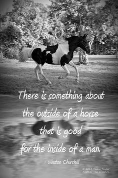 There is something about the outside of a horse that is good for the inside of a man.