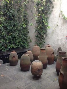 Jar Garden. I love this, but in my backyard it would just look like I was hoarding pots.