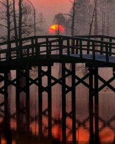 Bayou Bridge, Louisiana