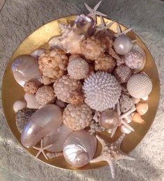 Seashell display on gold lacquer bowl