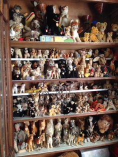 Amazing Steiff collection.  MY STEIFF LIFE