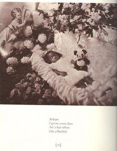 van der zee harlem book of the dead