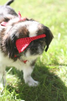 red crocheted pirate eye patch for small dogs by by yourmomdesigns, $4.00