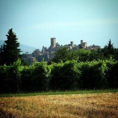 #Castellarquato #castello #castle #Piacenza #TurismoER #visitpiacenza #paesaggio #landscape #vivopiacenza #igerspiacenza #volgopiacenza #igemiliaromagna #emiliaromagna  #atmosphere  #ig_piacenza #ig_emiliaromagna #top_italia_photo #nature #italia #italy #terrediverdi #vivoemiliaromagna  #instapic #volgoemiliaromagna #picoftheday #atmosfera #instanature #borghitalia #naturelovers #natura @turismoer @terrediverdi by federico_lavelli