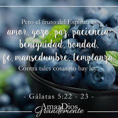 Viernes Semana 5, Gálatas 5:22-25   Cuando leo esta palabra me conecta inmediatamente con Juan 15 cuando Jesús habla de si mismo diciendo que El es la vid y nosotras los pámpanos.  El fruto del Espíritu es el resultado o el producto de mi relación personal con Dios, el estar conectada y permaneciendo en Cristo, unida a esta vid de la cual fluirá la vida de Cristo en mi.   #AmaaDiosGrandemente #AADG #LoveGodGreatlyOfficial #LoveGodGreatly #Libertad #Devocionales #Gálatas