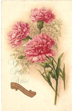 Pink Carnations Vintage French Postcard by VintagePaperAttic, $5.99