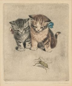Artwork by Meta Plückebaum, Radierung mit Katzenmotiv, Made of Etching Cat Sketch, Cat Drawing, Dog Art, Crazy Cats, Cats And Kittens, Kitty Cats, Portrait, Cute Cats, Cat Lovers