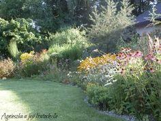 Prvodekádově sprnová kvetoucí zahrada… – KVETOUCÍ ZAHRADA