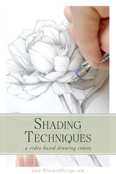 flower art Learn how to add realistic shading to flower drawings in this video tutorial series! Learn different shading techniques like smooth shading and cross hatching in this class. Pencil Art Drawings, Cartoon Drawings, Easy Drawings, Flower Drawings, How To Shade Drawings, Pencil Sketching, Drawing Skills, Drawing Lessons, Drawing Tips