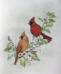 cardinals in the winter