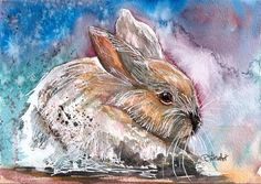 """Daily Paintworks - """"5x7 White Rabbit Watercolor, Pen and Ink Mixed Media by Penny Lee StewArt"""" - Original Fine Art for Sale - © Penny Lee StewArt"""