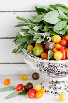 Tomato Circus with Sage by Laksmi W.