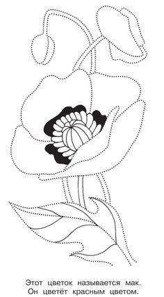 раскраска цветок мака соедини точки и раскрась скачать