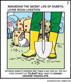 Another reason to NOT get a bunny for Easter…If you have a busy lifestyle a bunny may not be for you Rabbit Life, House Rabbit, Rabbit Art, Bunny Rabbit, Dutch Rabbit, Rabbit Jokes, Funny Bunnies, Baby Bunnies, Bunny Meme