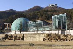 Songnam Space Center in South Korea that we partnered with Samsung Metal on to fabricate the beautiful patina copper dome for this center!