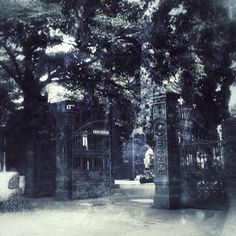 The graveyard was deserted when I took the pic before going in.  It was deserted while I was there, until the film was developed.  Spirit, Ghost, Ghoul, Soul ?????