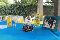 noivado-economico-sitio-minas-gerais-decoracao-azul-e-amarelo (4)