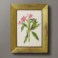 A Floral Watercolour - Timothy Langston