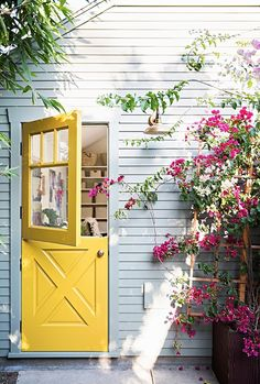 In a warm climate, plant a red bougainvillea vine next to a door painted a bright, clear color to create a pleasing contrast.