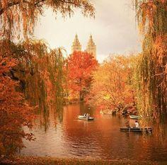 Autimn Central Park