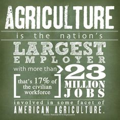 Agriculture fights unemployment.