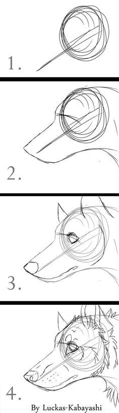 4 drawings about how you can draw a wolf or dog head, I drew it quick so it's not the best xD Hope some of you like it, or use it