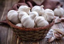 Léčivé účinky česneku: To, co následuje po přiložení česneku na náplast je neskutečné.