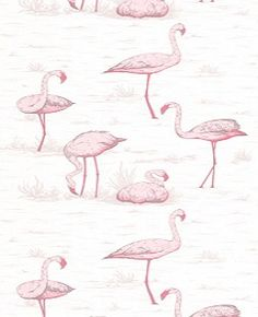 Flamingos 95-8045 Cole and Son Wallpaper --save the pink bathrooms