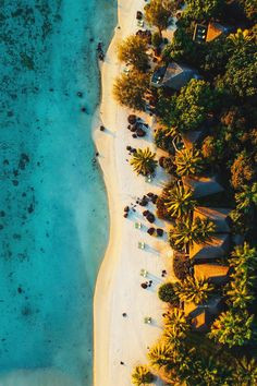 "souhailbog: ""  Cook Islands By  Kyle Kuiper 