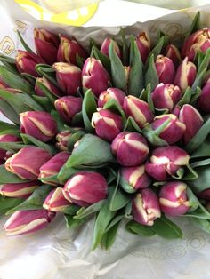 Sold in bunches of 20 stems from the Flowermonger the wholesale floral home delivery service. Red Wedding Flowers, Red Flowers, Stems, Tulips, Diy Wedding, Succulents, Delivery, Vegetables, Lifestyle