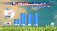 Fall pollen season in full force | Weather  - Home